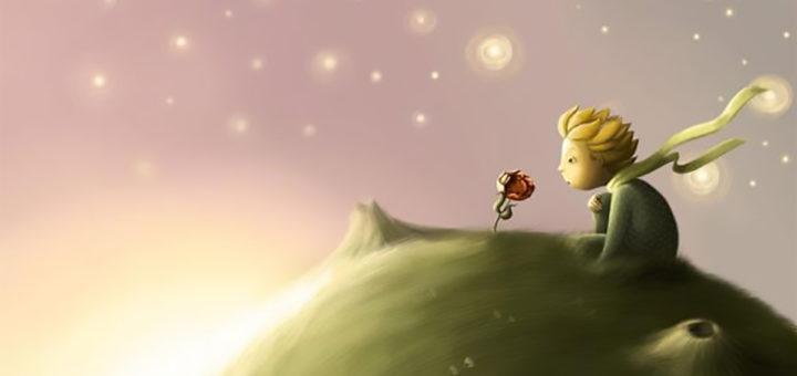 Risultati immagini per il piccolo principe la rosa